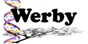 Werby Group