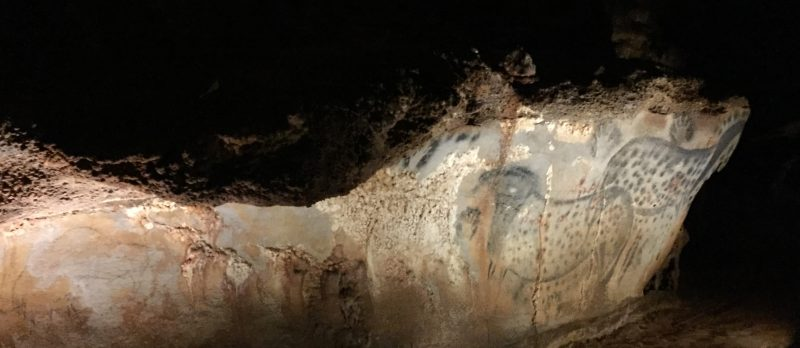 Prehistoric Cave Art in France